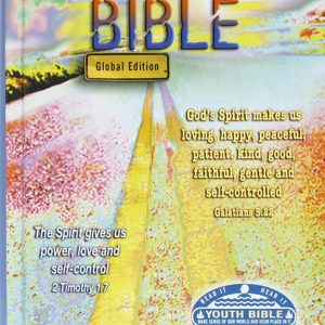 CEV 033 Youth Bible