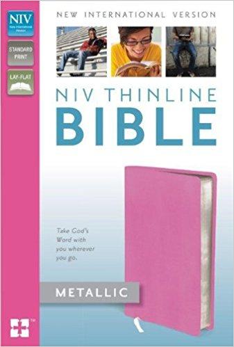 NIV Thin Line Metalic Bible
